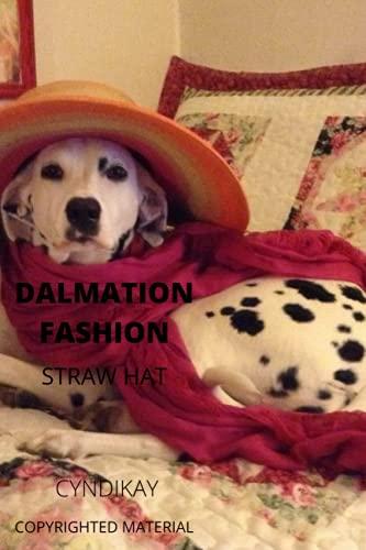 Sombrero de pajita de moda de DALMACIÓN: CUADRO DE Paja