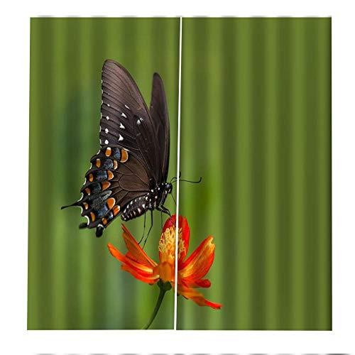 Cortina de Gancho de sombreado Alto 3D, Cortina de Fibra de poliéster con Estampado de Mariposas, decoración de Sala de Estar y Dormitorio, 108x63 Pulgadas, 2 Paneles