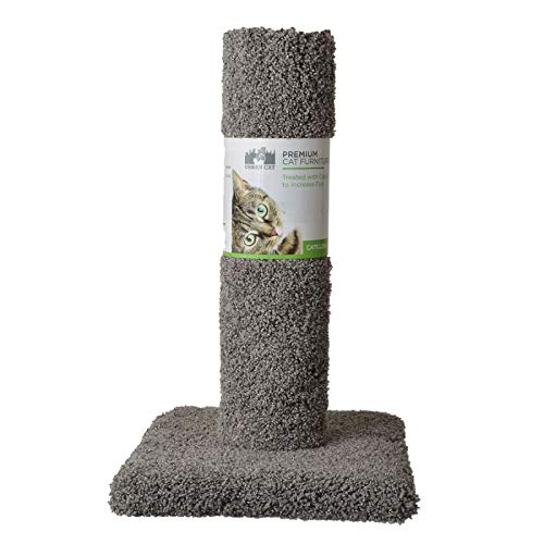 Find Bargain North American Pet Urban Cat Cat Carpet Scratching Post 20 High (Assorted Colors)