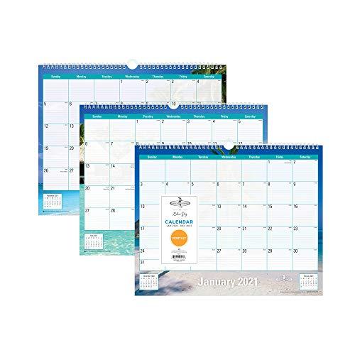 "Endless Summer for Blue Sky 2021 Monthly Wall Calendar, Twin-Wire Binding, 15"" x 12"", Endless Summer (117900-21)"