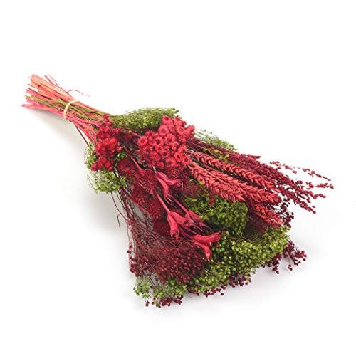 Bouquet-Verticale-Sanremo Fiori Essiccati dalla Riviera dei Fiori - Realizzato a Mano (colore rosso)