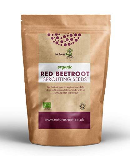Nature's Root Semi di Barbabietola Rossa Bio 250g - Microgreens | Germogli di microgreen | Non OGM | Biologico Certificato