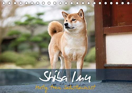 Shiba Inu - mutig, treu, selbstbewusst (Tischkalender 2021 DIN A5 quer)