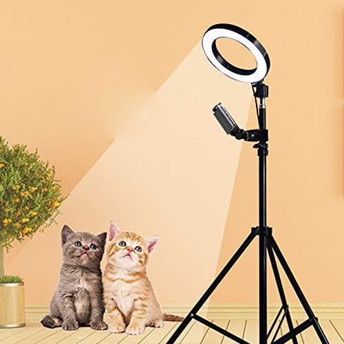 6 inch LED ring filllicht, live multifunctionele koplamp/met statief, desktop-schoonheid diafragma licht/3-kleuren verstelbaar