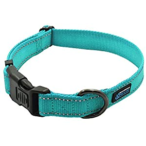 Max and Neo NEO Nylon Buckle Reflective Dog Collar – We Donate a Collar to a Dog Rescue for Every Collar Sold (Large, Teal)