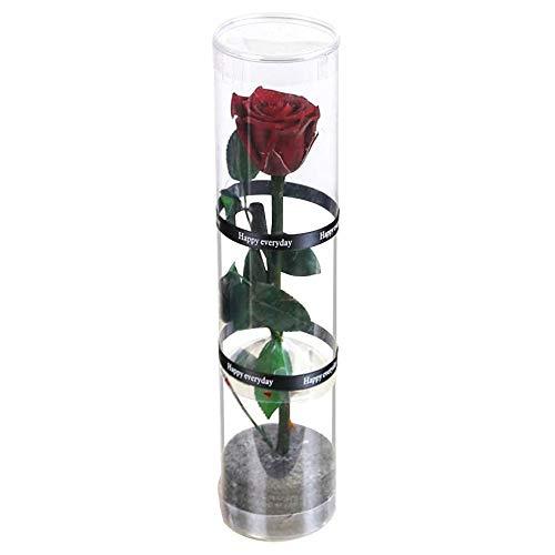 💖💖 【Alta calidad】: Flower Rose preservada está hecha de rosa fresca natural superior con tecnología de procesamiento de alta tecnología, sin necesidad de mantenimiento. 💖💖 【Regalo precioso】: La rosa que se conserva para siempre es el mejor regalo par...