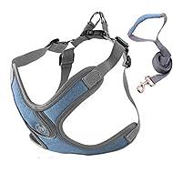 Alcheringa Dog Walking Harness Vest Adjustable Padded Comfortable Breathable Secure Reflective & Lig...