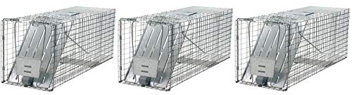 Havahart 1079 Large 1-Door Humane Animal Trap for Raccoons, Cats, Groundhogs, Opossums (Pack of 3)