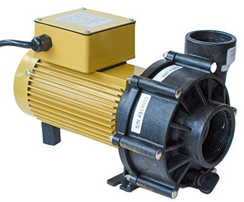 ReeFlo Dart/Snapper Hybrid Pump (3600/2600 gph)