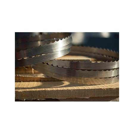 "Wood Mizer Bandsaw Blade 13/'5 Qty 1 x 1-1//4/"" x 042 x 7//8 10° 161/"""