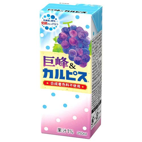 カルピス 巨峰&カルピス 250ml紙パック×24本入×(2ケース)