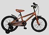 Umit Bicicleta 18' Xt18, Unisex niños, Naranja