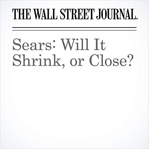 Sears: Will It Shrink, or Close? copertina