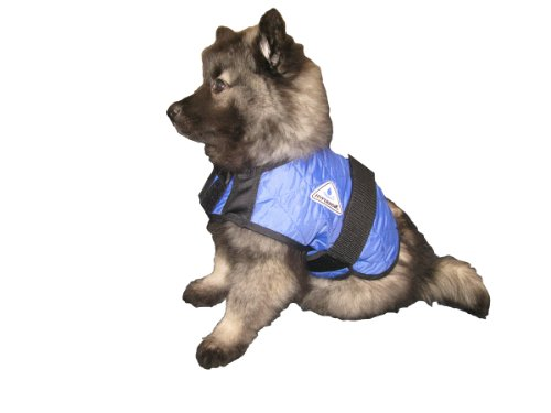 5. HyperKewl Evaporative Cooling Dog Coat
