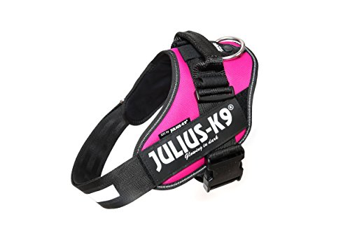 Julius-K9 IDC Powerharness for dogs