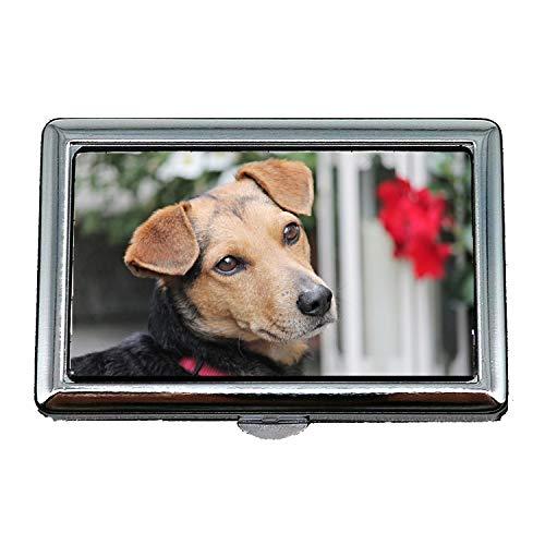 Zigarettenetui/Box, Hund Hybrid Brown Portrait Hundekopf Dog Look Fell, Visitenkartenetui Visitenkartenetui Edelstahl