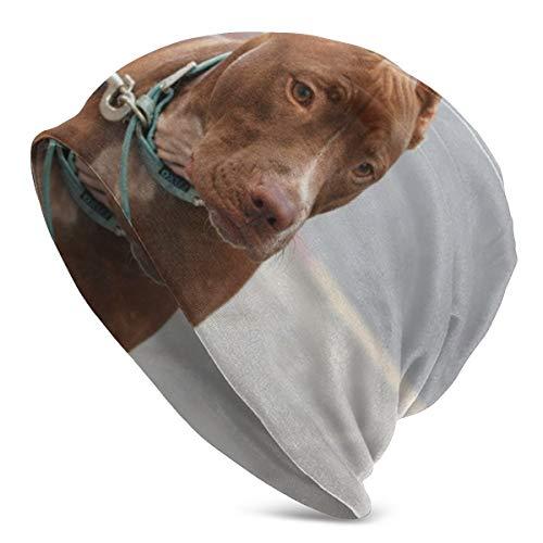 Meiya-Design Unisex Soft Beanie Cap American Pitbull Maulkorb Leine Hund Halsband Slouchy Chemo Hat Turban Cozy Skull Cap Lightweight Stretch Sleep Hat für Männer Frauen