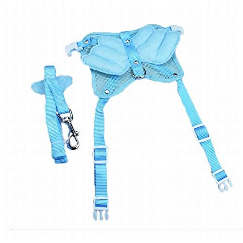 Dirgee Juego de Cuerdas de tracción Trasera del Pecho de Mascota, Cuerda de tracción de la Espalda del Pecho para un Perro pequeño y pequeño (tamaño: L) (Size : Medium)