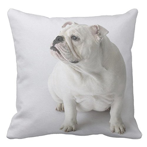 Poppy-Baby - Funda de cojín con diseño de bulldog inglés, color blanco, 45,7 x 45,7 cm, dos caras. Cojín decorativo con patrón animal