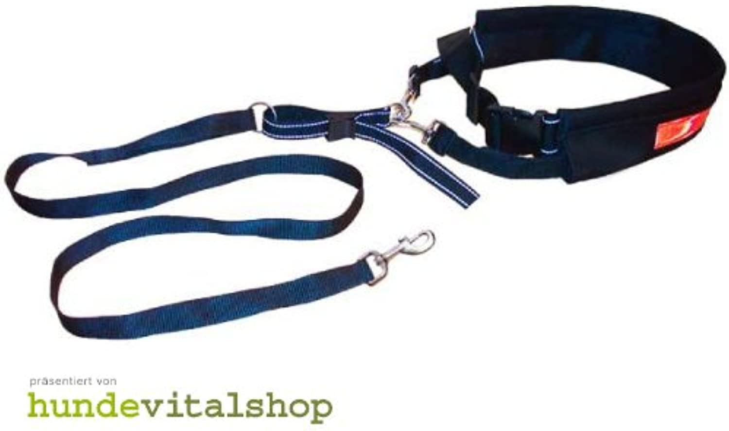 DTE Jogging Belt with Expander, Quick Release Buckle and 1 m Dog Lead