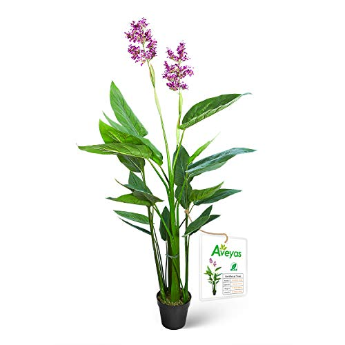 Aveyas 5ft Artificial Canna...