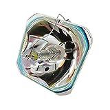 JRUIAN Lámpara de proyector con 95% de Brillo ELPLP41 Compatible con EPSON EMP-S5 EMP-S52 EMP-T5 EMP-X5 EMP-X52 EMP-S6 EMP-X6 EMP-260 Reemplazo de la Bombilla de proyección (Color: con Carcasa)