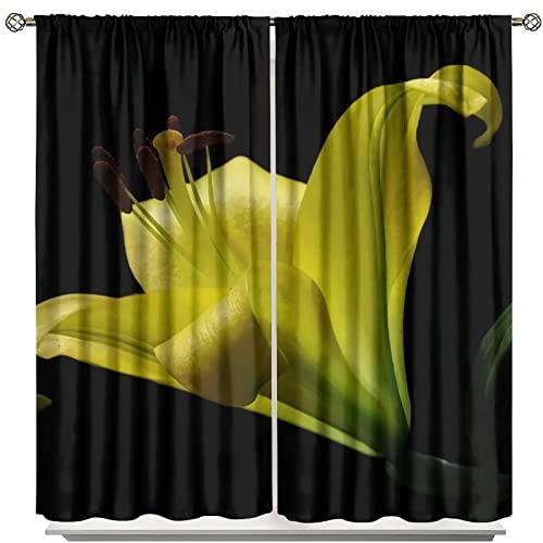 MRFSY Cortinas opacas de día Lily Plant Stamen Light Bloqueo de cortinas verticales 2 paneles Set de 214 x 214 cm