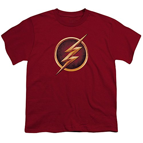 The Flash Logo -- CW's The Flash TV Show Youth T-Shirt, Youth Medium