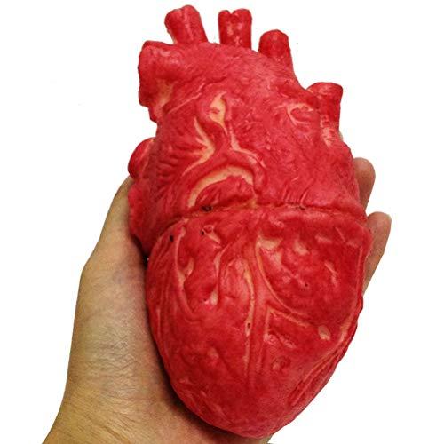 Yissma Halloween Sangriento Falso corazón Humano Halloween Cerebro Dedo Globos oculares Accesorios para la Fiesta de Halloween