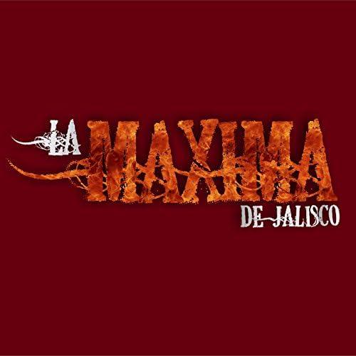 La Máxima De Jalisco