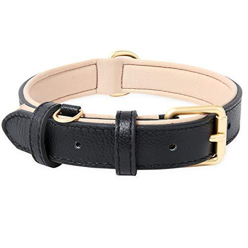HEELE Hundehalsband, Hundehalsband mit gepolstert und echtes Leder, Verstellbar, Halsband für Welpen Mittlere Kleine Hunde, Schwarz, M