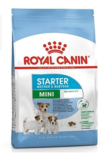 Royal Canine Starter Mini 3Kg 3000 g ⭐