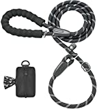 iYoShop Durable Slip Lead Dog Leash with Zipper Pouch, Padded Handle and Highly Reflective Threads Quality Slip Lead for Small Medium and Large Dogs (1/2'' x 6 FT, 25~150 lbs., Black)