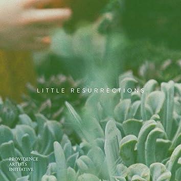 Little Resurrections