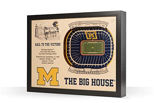 YouTheFan Michigan Wolverines 3D StadiumView