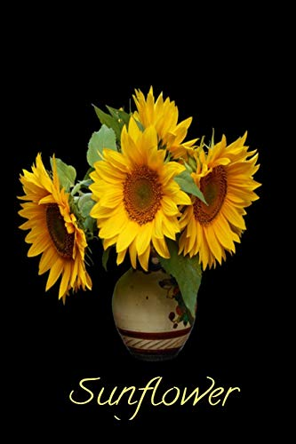 Sunflower: A Notebook to Write in for Everyone. Spacious 6 x 9. Used for an Everyday writer for Men, Women, Children and Teens with a Pretty Black Background with a Gorgeous Vase of Sunflowers