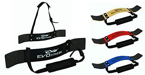 EVO Fitness Levantamiento de pesas Arm Blaster Biceps Aislante Gym Apoyo Correas Envolvente - Negro