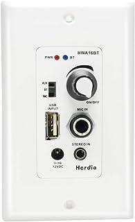 Herdio - Amplificador de control de audio Bluetooth para pared con micrófono USB Aux (3,5 mm), módulo máximo de 100 W para...