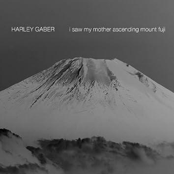 Gaber, H.: I Saw My Mother Ascending Mount Fuji