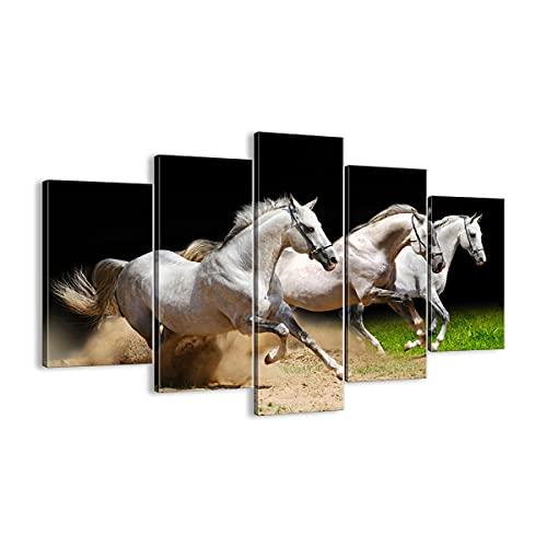 Cuadro sobre lienzo - Impresión de Imagen - Caballos arena hierba - 150x100cm -...