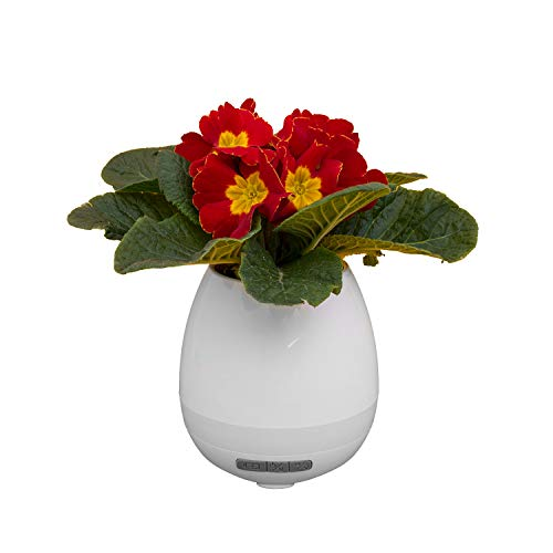 LED Flower Pot - Bluetooth Lautsprecher