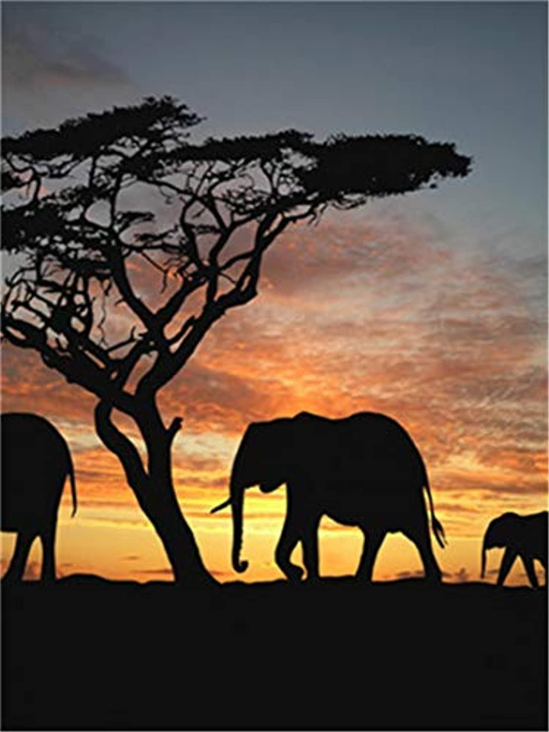 Paint by Numbers Kits DIY Oil Painting Home Decor Wall Value Gift - Elephants at Sunset 16X20 Inch (Frame)