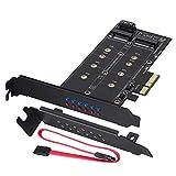 MZHOU Tarjeta de Adaptador Dual M.2 SATA III y M2 a PCIe 3.0 X4