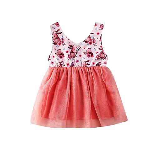 Binwwe - Vestido de Conejito de Pascua para niña recién Nacida/Infantil Vestido Floral sin Mangas de Princesa (Pink, 2-3 Years)