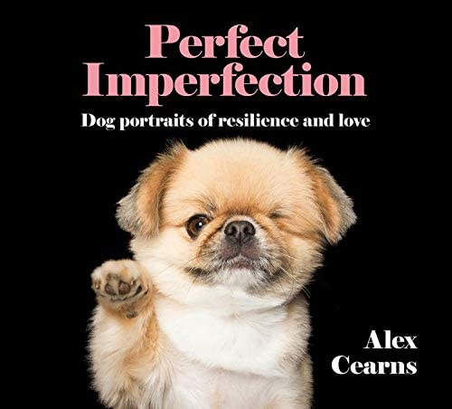 Perfect Imperfection Dog Portraits Of Resilience And Love product image