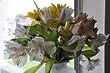 Peinture sur Toile Bricolage Peinture par numéros Cadeau de Vacances Adultes Fleurs Bouquet de Pâques