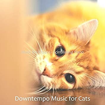 Music for Kittens - Scintillating Piano