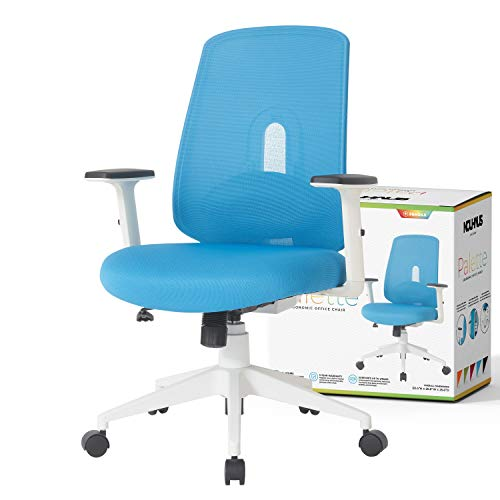 NOUHAUS Palette Ergonomic Office Chair Comfortable Swivel Computer Desk Chair, Lumbar Adjust Rolling...