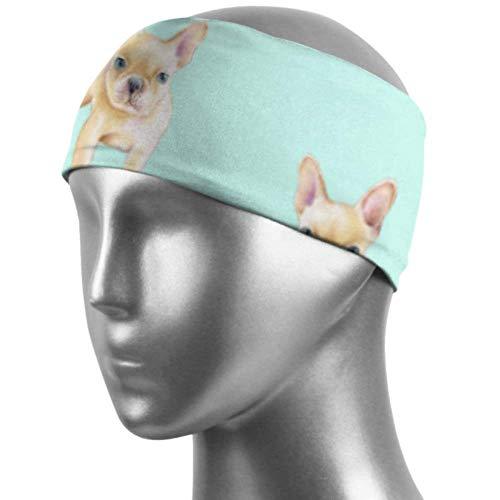 Verctor Sport Fitness Stirnband Französische Bulldogge Tier Haarband Unisex Feuchtigkeitstransport