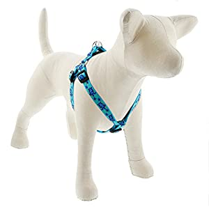 LupinePet Originals 3/4″ Turtle Reef 20-30″ Step in Harness for Medium Dogs